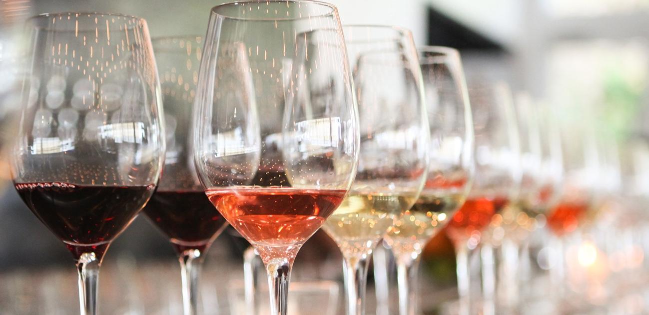 Mirando el Vino