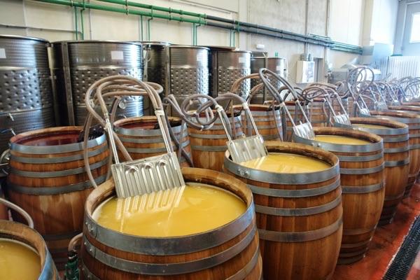 Resultado de imagen para fermentacion